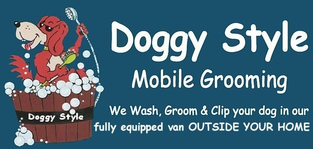 Dog Grooming Plymstock